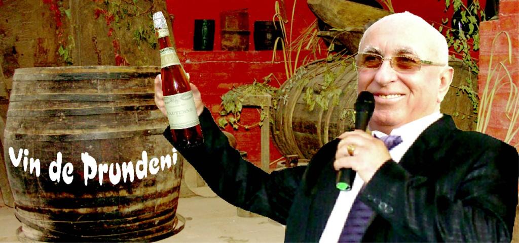proiectul-drumul-vinului-la-Prundeni-Valcea-1024x481