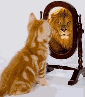 narcisismo2