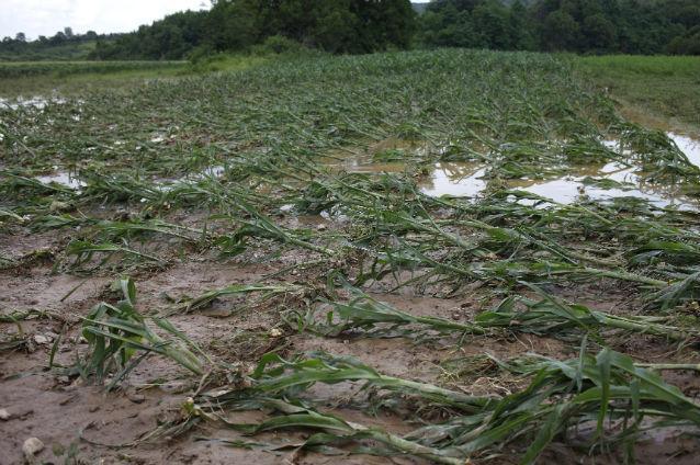 inundatii-terenuri-agricole
