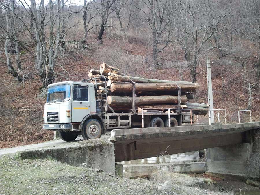 transport-lemne
