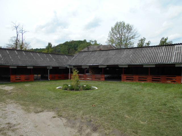 amenajare spatiilor la Biserica Valeni si Tilvaci