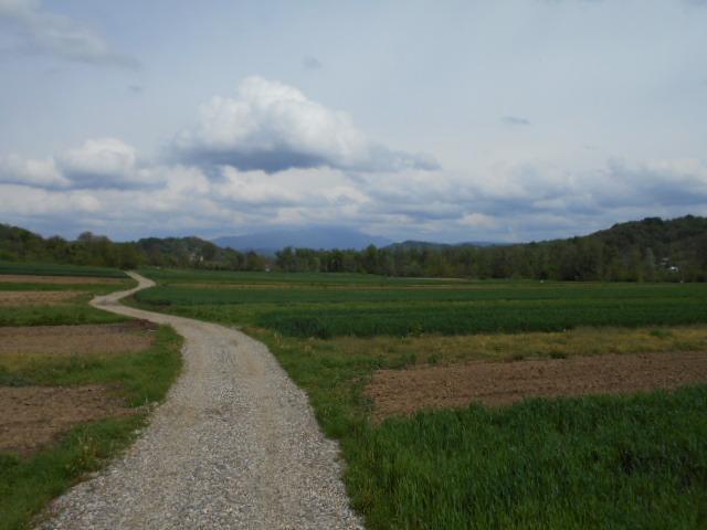reabilitare drum agricol Batesani