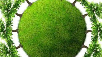 mediu ecologie