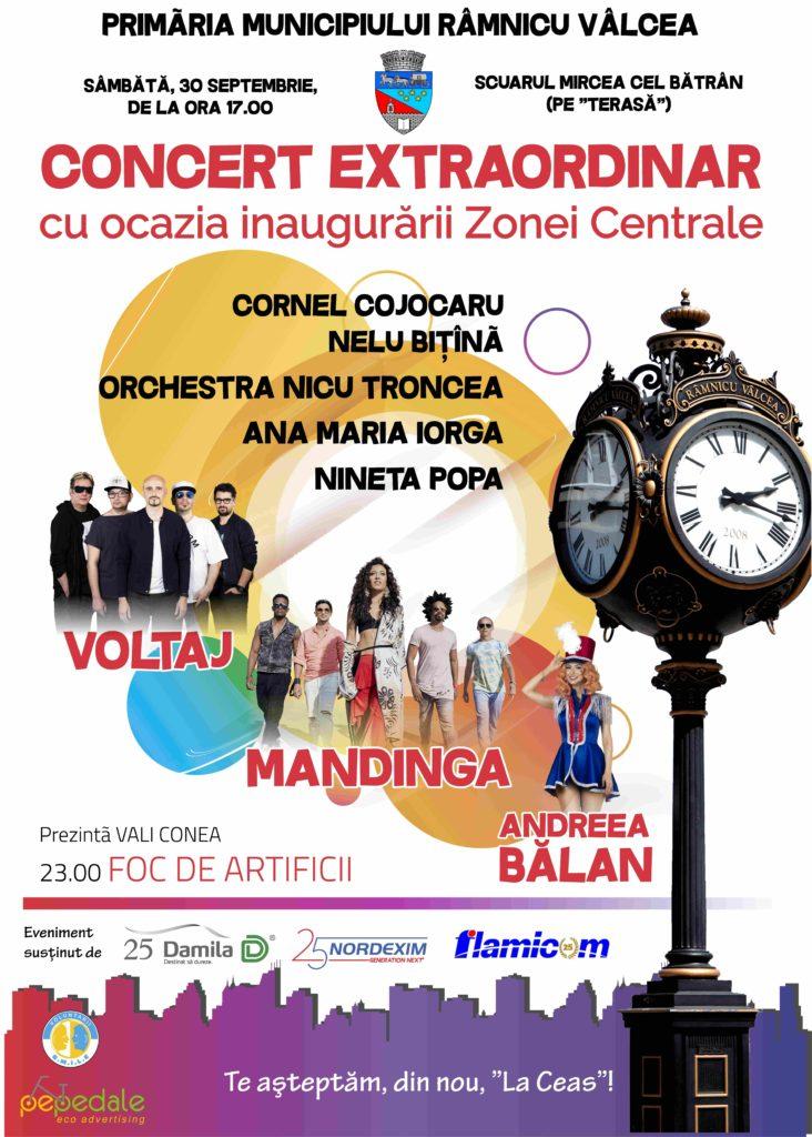 afis concert_Print