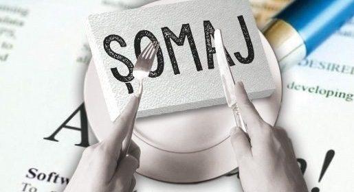 somaj-515x330