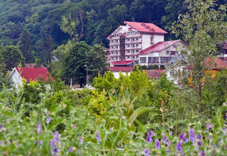 hotel-orizont-cozia-vedere-faleza-olt - Copy