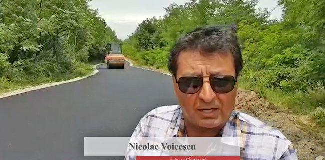 Drum-Fartatesti-Rosiile-Nicolae-Voicescu
