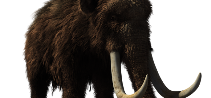 woolly-mammoth-2722882_960_720