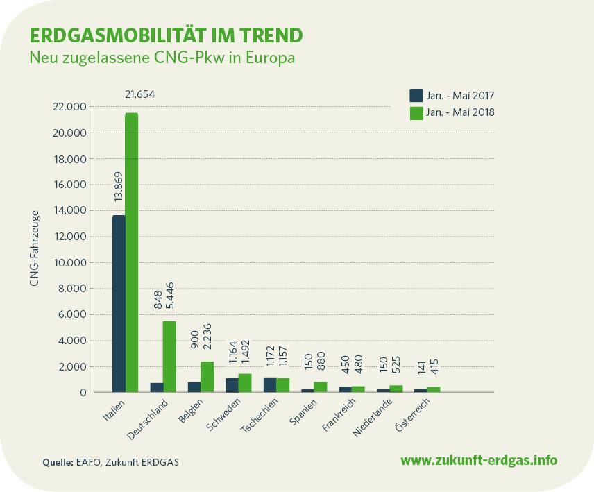 new natgas cars - Zukunft Erdgas