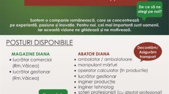 Macheta anunt angajare DIANA (sept 2018)
