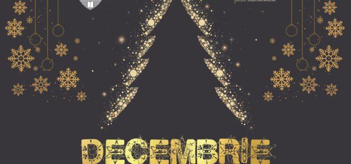 vizual Decembrie Magic