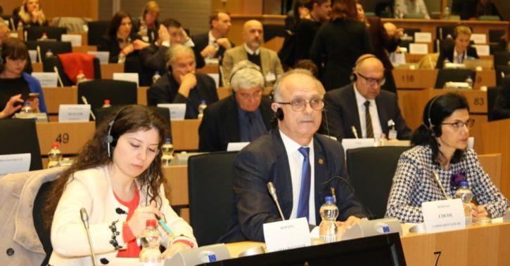Discurs al deputatului PSD de Valcea, Vasile Cocos, in Parlamentul European