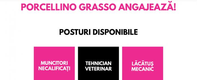 anunt-angajare-porcellino-septembrie2019