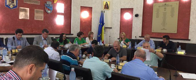 consilieri locali Ramnicu Valcea