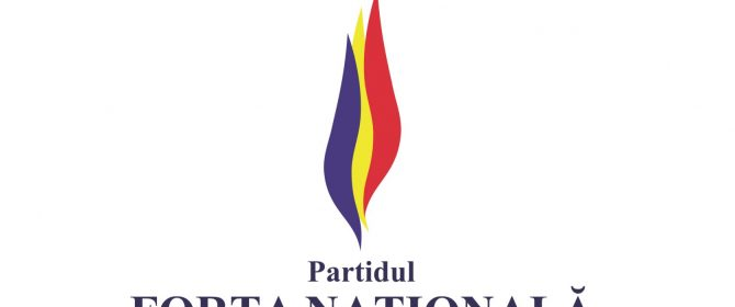 partidul-forta-nationala_49824700