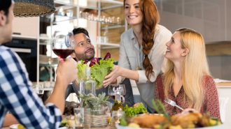 Musafiri în vizită la masă