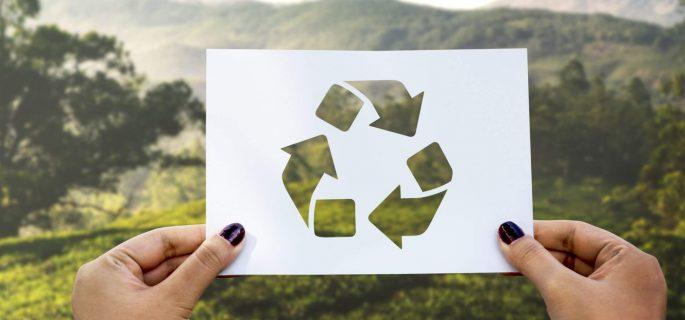 pungi ecologice deschidere