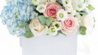 Imagine Articol whitepress florariadevis_ro pentru ziaruldevalcea_ro