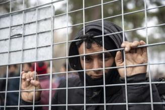Traficanti-de-migranti-prinsi-in-flagrant-de-politistii-din-Valcea-Cat-au-platit-doi-irakieni-pentru-a-trece-fraudulos-frontiera-catre-Europa-de-Vest