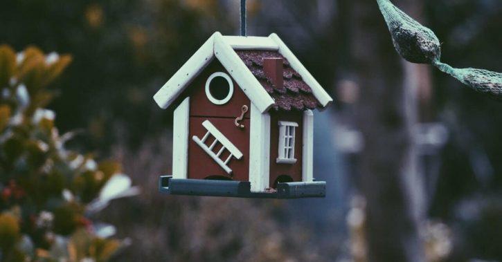 Care sunt principalele diferențe dintre cele două tipuri de asigurări pentru locuință: obligatorie și facultativă?